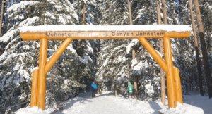 バンフ国立公園のなかにあるジョンストンクリーク。カナダのロッキー山脈のボウ川の支流です。