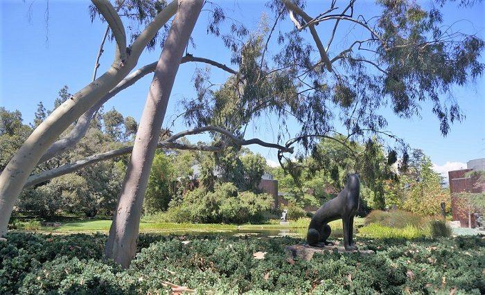 ヘンリー・ムーア(Henry Spencer Moore)や、ジャック・リプシッツ(Jacques Lipchitz)の彫刻作品がそこほこに!|ノートン・サイモン美術館(Norton Simon Museum)の回遊式彫刻庭園(Sculpture Garden)