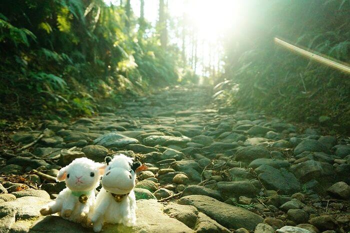 熊野古道散策におすすめしたいわたらせ温泉。公共交通機関で旅する人にとってはコスパ最高です!