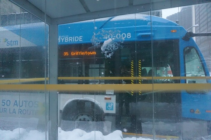 モントリオールでバスに乗ってみた!