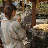 嬉野温泉街の中心にある豊玉姫神社の白なまず様、お参りの仕方