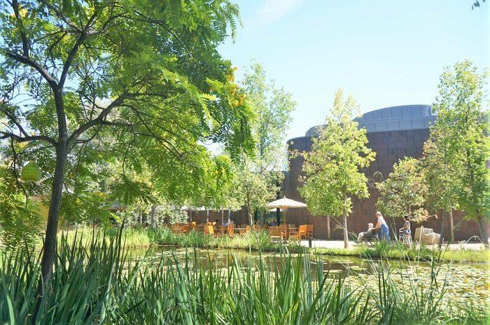 モネの睡蓮の世界に出会える!|ノートン・サイモン美術館(Norton Simon Museum)の回遊式彫刻庭園(Sculpture Garden)