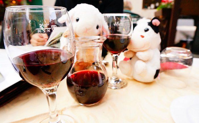 スロヴェニアはワインが超おいしい!|リュブリャナ城も徒歩圏内!観光に便利なおすすめホテル
