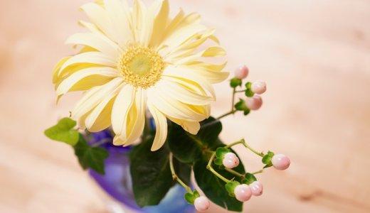 癒し効果抜群!手軽に楽しむ花のある暮らし&簡単な飾り方のコツ