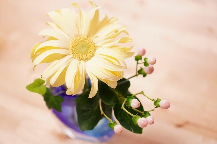 花のある暮らしは癒し効果抜群!