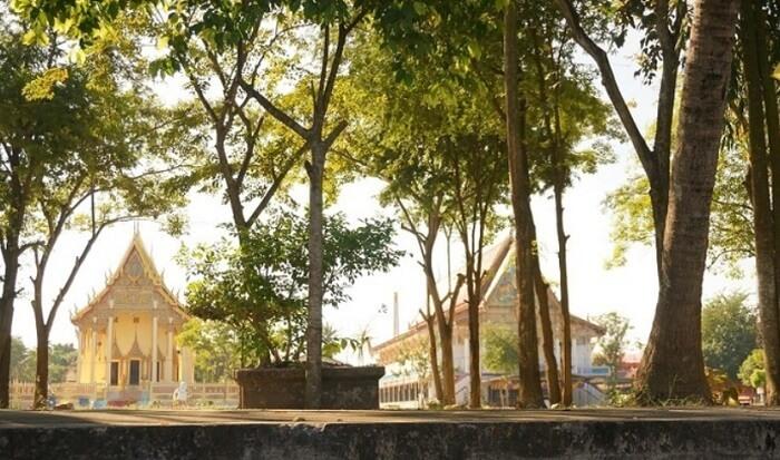 仏教の国、タイ。おすすめ観光スポットは?