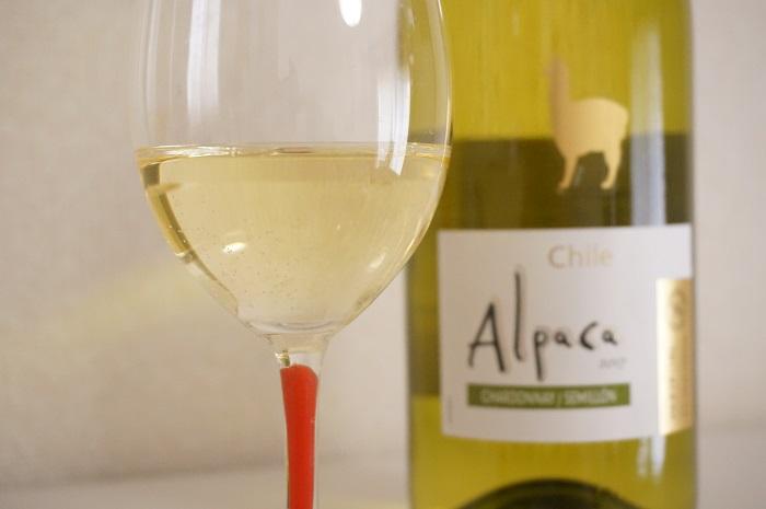 【アルパカワイン飲み比べ】辛口な白も、しっかりな赤も、スパークリングも♡部屋着で飲みたいワインはコレ!