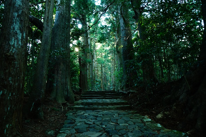<熊野古道散策>大門坂から那智大社を目指して歩いてみた