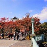 金沢の兼六園は紅葉の季節がおすすめ!徒歩圏内の人気ホテルも