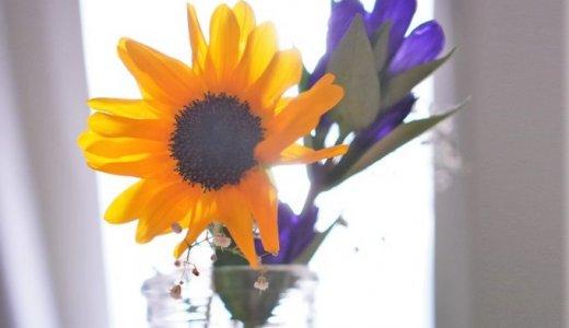 200店舗以上の花屋と提携!お花のサブスク「ブルーミー」のブーケに夢中♡
