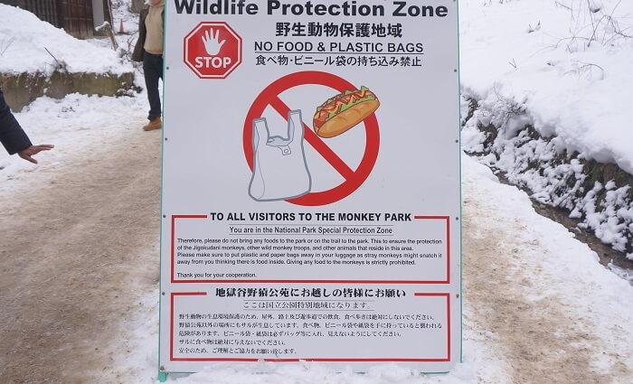 <地獄谷野猿公苑>での注意点は?野生のサルたちとの共生のためのルールも。