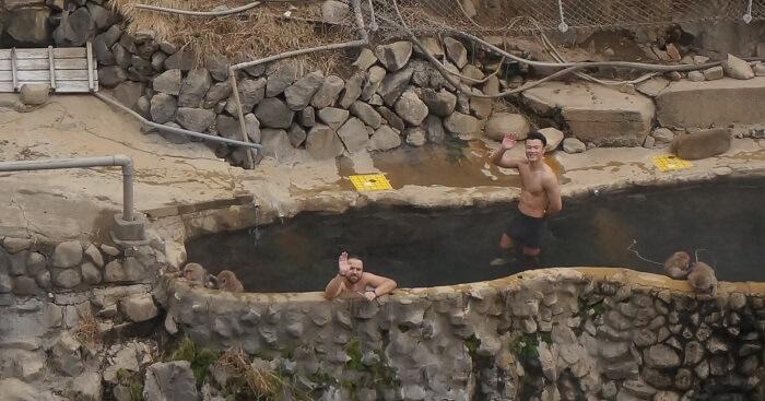 <地獄谷野猿公苑>の近くに猿と一緒に入れる露天風呂があるってホント?!