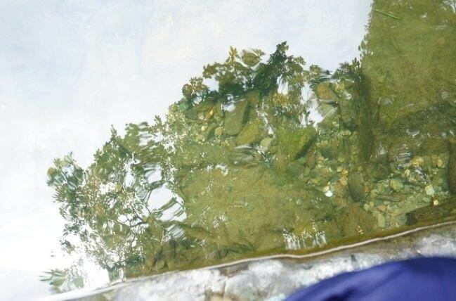水がキレイな五十鈴川。