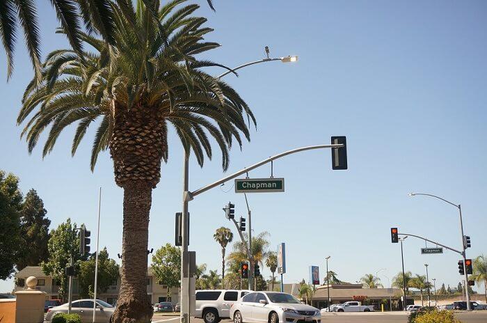 実例:カリフォルニアでLyft(リフト)利用して困ったトラブル